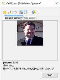 The Image Viewer can present images stored in the most common image formats, such as PNG, JPG, GIF, TIFF, BMP, and PDF documents.